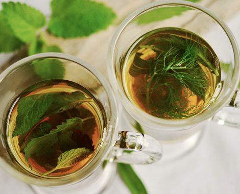 Hellys-herbal-tea